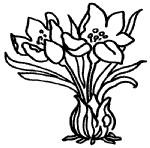 水仙花简笔画图片画法
