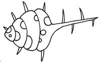 贝壳简笔画图片画法