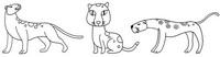 豹子简笔画简单画法