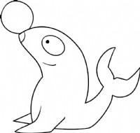 海豹简笔画简单画法