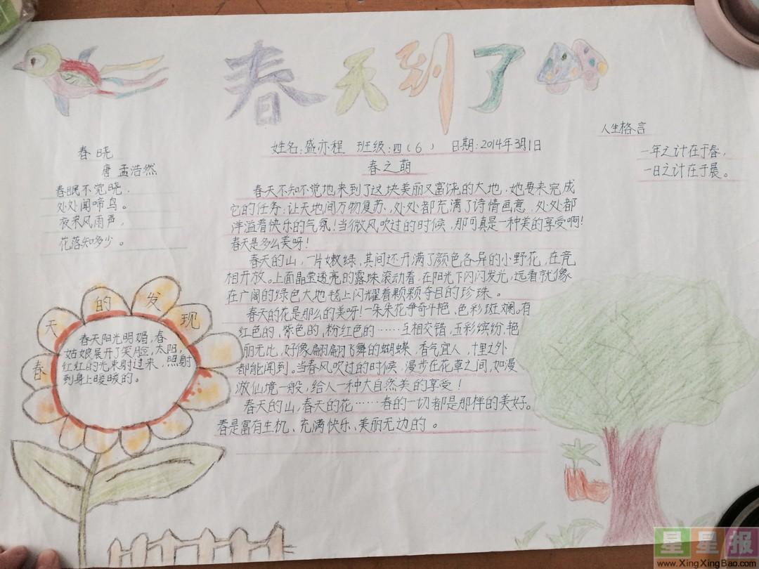 小学生春天手抄报设计图