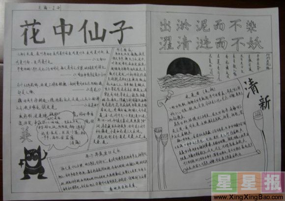关于荷花手抄报版面设计图