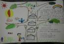 三年级爱护树木手抄报图片