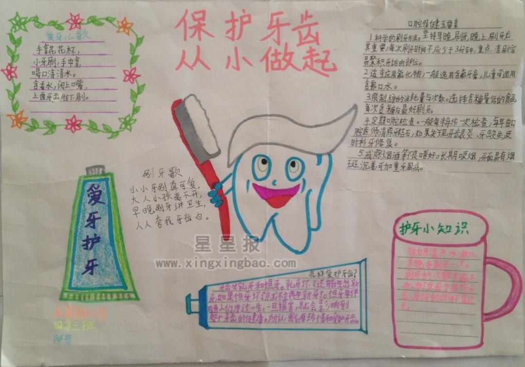 爱牙护牙手抄报内容