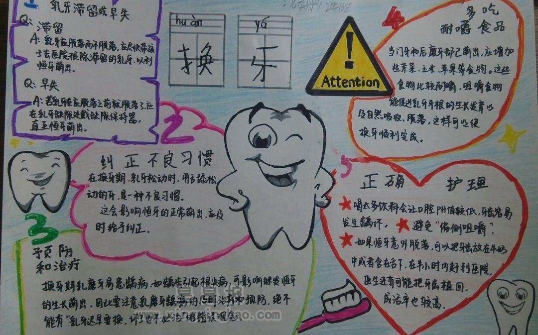 爱牙护牙手抄报资料——换牙 - 星星报
