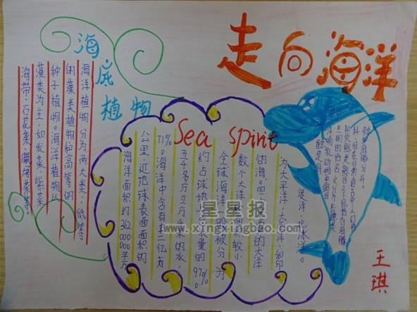 保护海洋环境的手抄报-保护海洋环境绘画,海洋环保手抄报内容,海洋