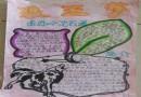 五年级狼王梦手抄报图片