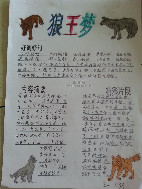 五年级狼王梦手抄报图片图片