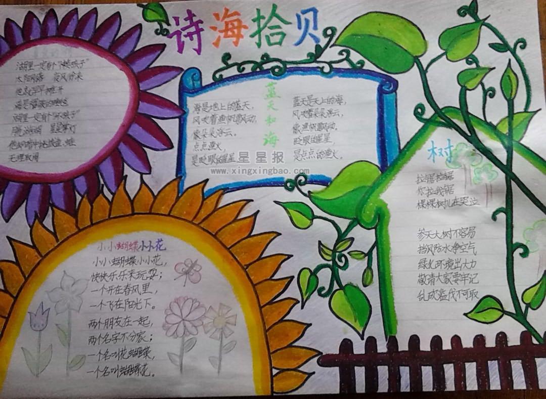 关于诗海拾贝手抄报版面设计图10张 - 星星报