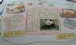 熊猫介绍手抄报内容