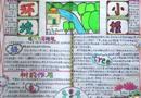 世界环境日手抄报花边与图案