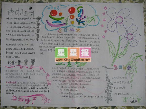 bytes) 指导老师: 杨芳燕 美术编辑: 陈世鸿 关于兰花的手抄报简介:本