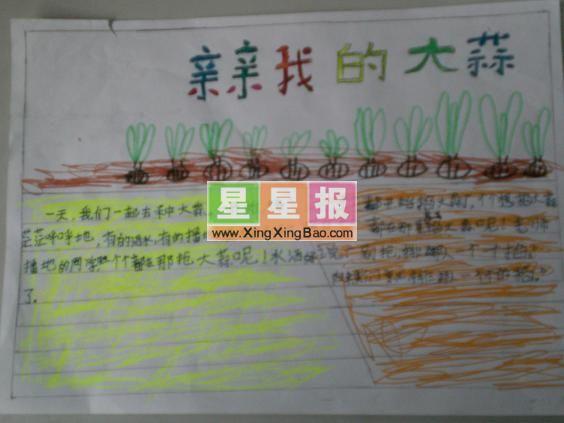 小学生上网手抄报题目设计