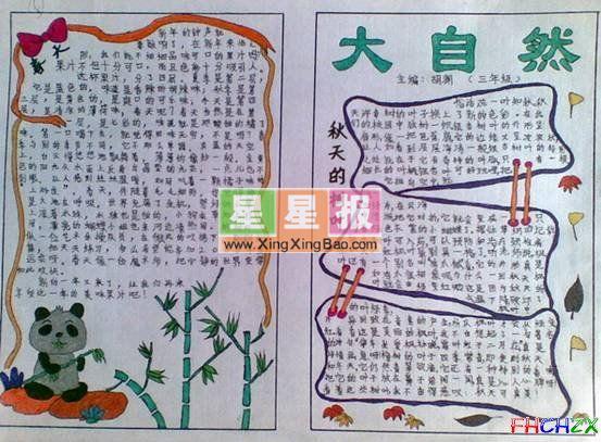 关于大自然的手抄报_秋天的树叶