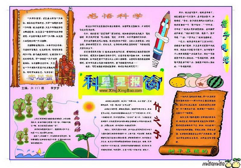 重阳小报模板图片大全 小报,重阳节小报版面设计图,读