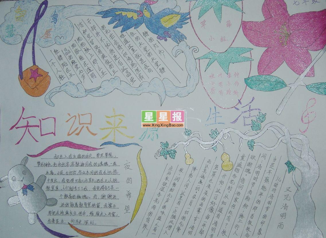 中学生手抄报图片(四张小图)